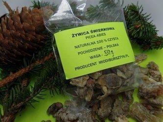 Żywica świerkowa naturalna zbierana ręcznie 50 g