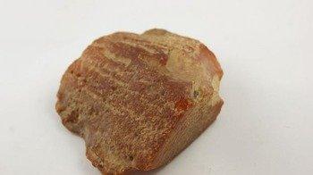bursztyn bałtycki niepopękany muzealny surowy 102,0 g