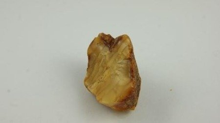 bursztyn bałtycki nieszlifowany koniak surowiec