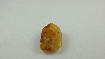 bursztyn bałtycki otwór żółty polerowany naturalny 9,8 g