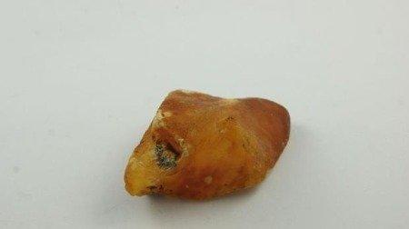 bursztyn bałtycki pomarańczowy biały muzealny 20,4 g